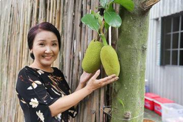 Diễn viên Ngân Quỳnh lần đầu chia sẻ kinh nghiệm giúp tóc chắc khỏe, đẹp tự nhiên
